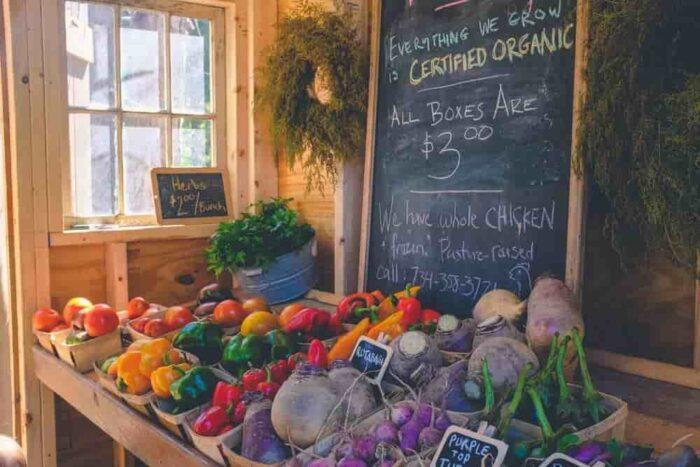 Organic Food Grocery- www.unwedhousewifeblog.com