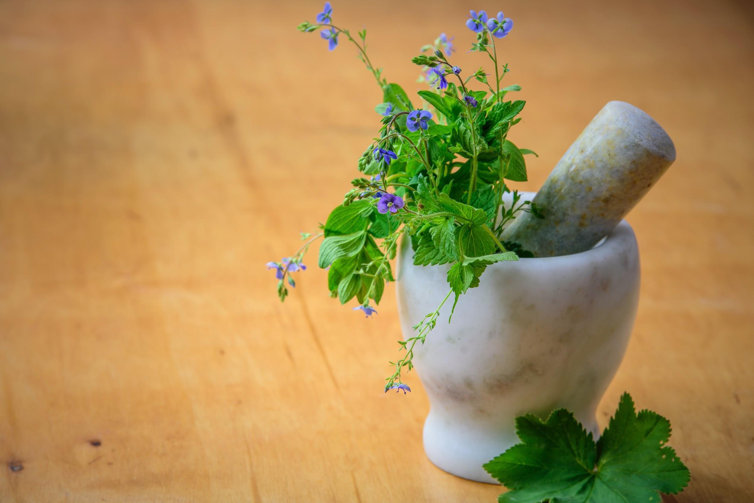 herbs, mortar and pestle-www.unwedhousewifeblog.com-